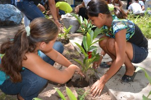 Planting seeds for the future at Padre Nello