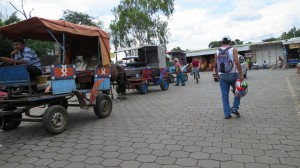Local horse carriage taxis lining up by the market.